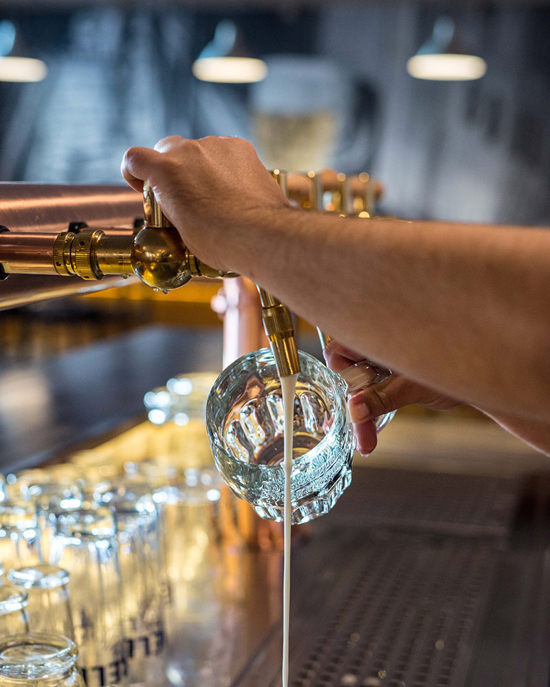 trezor-kvalita-pivo