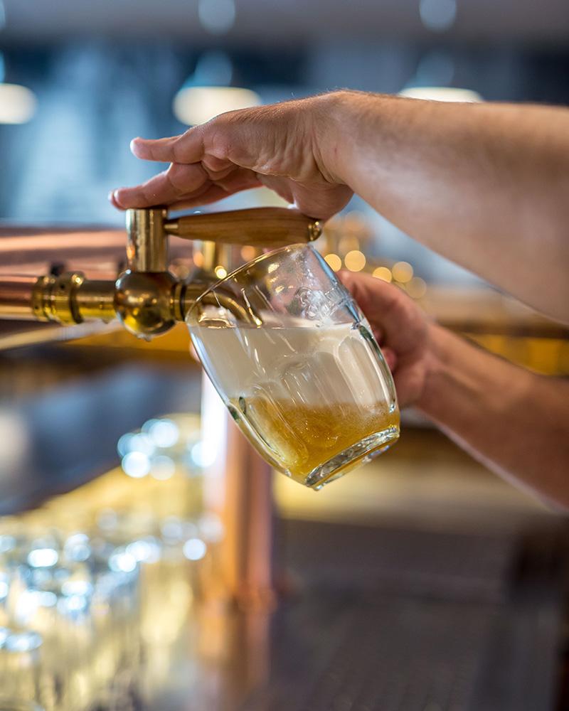 trezor-kvalita-pivo1
