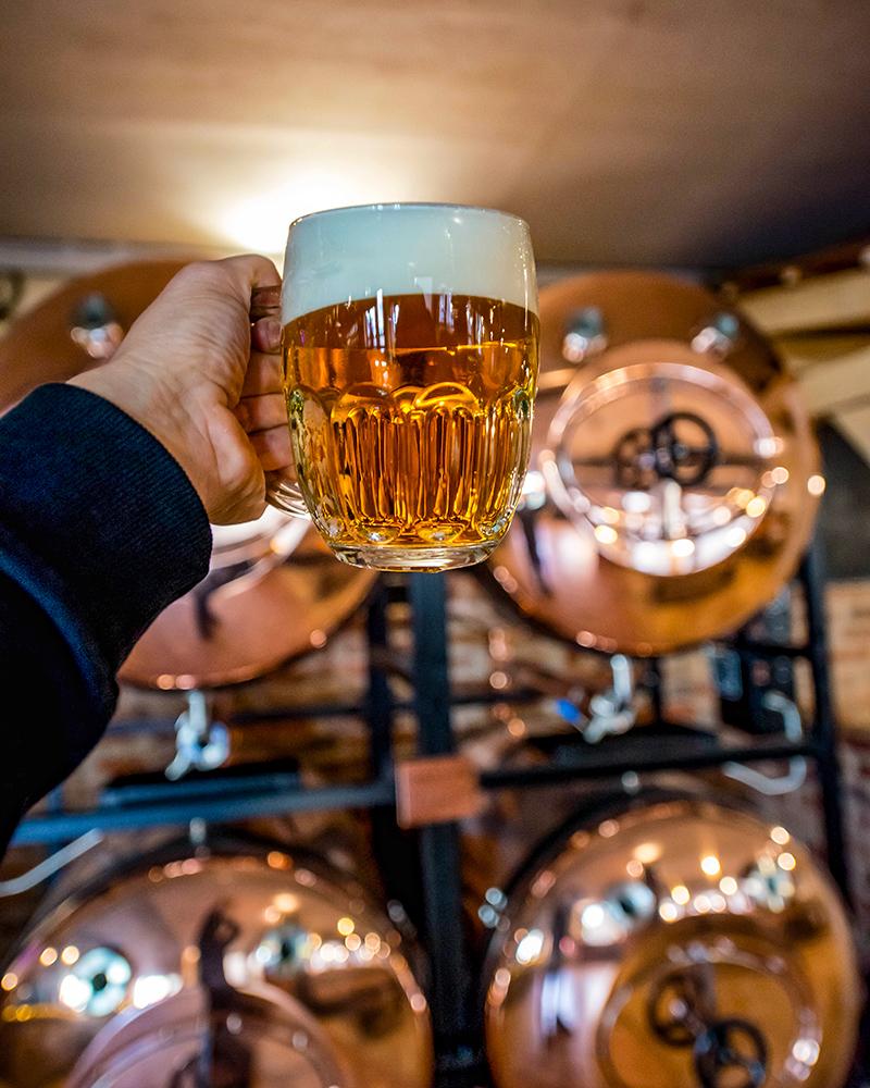 trezor-kvalita-pivo2